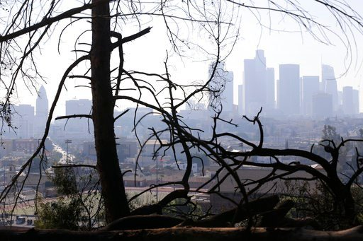 (AP Photo/Damian Dovarganes, File). FILE - In this Dec. 14, 2017 file photo, Los Angeles skyline is seen through burned trees after a brush fire erupted in the hills in Elysian Park in Los Angeles. California's water managers are saying it's too early ...