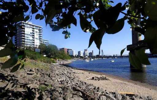 (AP Photo/Don Ryan, File). File - In this July 6, 2017 file photo, a section of newly formed beach, named Poet's Beach, is shown on the Willamette River in downtown Portland, Ore. Oregon is suing the agrochemical giant Monsanto over PCB pollution that ...