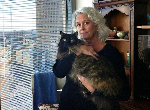 (Dan Sullivan/The Tampa Bay Times via AP). Christine Lee holds her long-haired house cat, Calli, in her condominium in downtown Tampa, Fla., on Thursday, Jan. 4, 2017. In a lawsuit, a contractor alleges that he was attacked by a bobcat while working in...