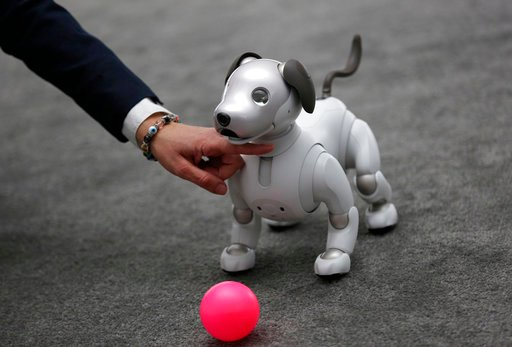 (AP Photo/John Locher). The Aibo robot dog is on display at the Sony booth after a news conference at CES International, Monday, Jan. 8, 2018, in Las Vegas.