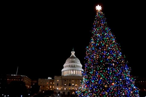 (AP Photo/Andrew Harnik, File). FILE- In this Dec. 6, 2017, file photo, the Capitol Christmas Tree, which came from a northwestern Montana forest, is lit on the West Lawn of the U.S. Capitol in Washington. Some Montana companies hope to keep the fame o...