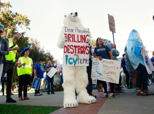 (AP Photo/Rich Pedroncelli, File). FILE - In this Thursday, Feb. 8, 2018 file photo, a protester dressed like a polar bear joins other protesters against oil drilling off the California Coast in a march from the state Capitol to a hearing by the U.S. B...