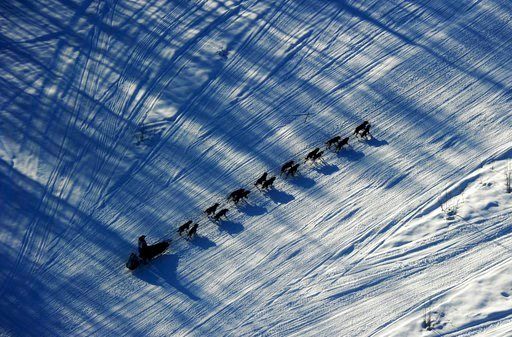 (Bob Hallinen/Anchorage Daily News via AP, File). FILE - In this March 2, 2014, file photo, musher Nathan Schroeder drives his dog team down the trail just after the start of the Iditarod Trail Sled Dog Race near Willow, Alaska. The 46th running of Ala...
