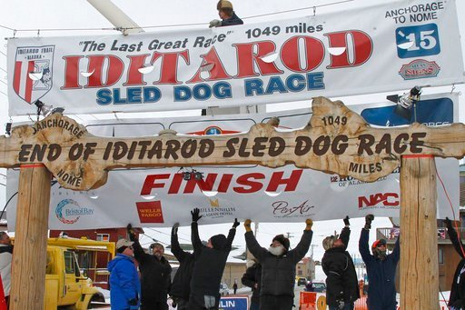 (AP Photo/Mark Thiessen, File). FILE - In this March 16, 2015, file photo, volunteers help raise the Iditarod finishers banner at the burled arch finish line in Nome, Alaska. The 46th running of Alaska's famed Iditarod Trail Sled Dog Race kicks off Sat...