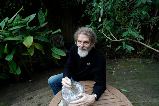(AP Photo/Jeff Chiu, File). FILE - In this Dec. 22, 2017, file photo, Dale Gieringer, of NORML (National Organization for the Reform of Marijuana Laws), poses at his house in Berkeley, Calif. Some states that have legalized marijuana are considering pr...