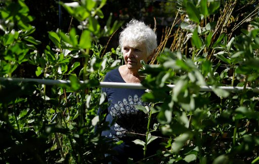 (AP Photo/Gregory Bull). In this March 2, 2018, photo, Christine Sheppard poses for a picture in her backyard garden in Oceanside, Calif. Sheppard said she sprayed Roundup for years to control weeds on her coffee farm in Hawaii. In 2003, she was diagno...