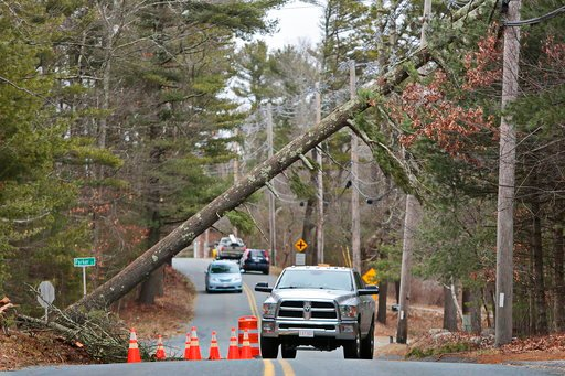 (Peter Pereira/Standard Times via AP). Vehicles drive under a white pine tree that is leaning across the road in Freetown, Mass., on Tuesday, March 6, 2018.