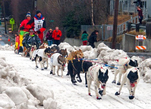 (AP Photo/Rachel D'Oro, File). FILE - In this March 7, 2015, file photo, musher Wade Marrs of Willow, Alaska, leads his team during the ceremonial start of the Iditarod Trail Sled Dog Race in Anchorage, Alaska. Marrs, in a statement released by his ken...