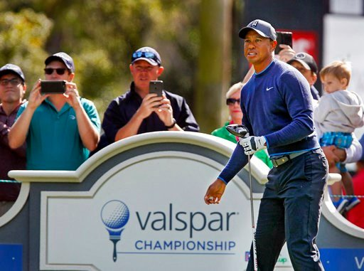 (Jim Damaske/Tampa Bay Times via AP). Tiger Woods watches his tee shot on the 14th hole  at Innisbrook's Copperhead course during the pro-am at the Valspar Championship golf tournament, Wednesday, March 7, 2018, in Palm Harbor, Fla