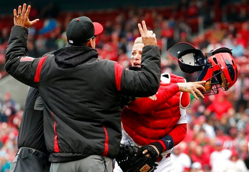 (AP Photo/Jeff Roberson). St. Louis Cardinals catcher Yadier Molina, right, throws off his mask as he argues with Arizona Diamondbacks manager Torey Lovullo during an altercation in the second inning of a baseball game Sunday, April 8, 2018, in St. Lou...