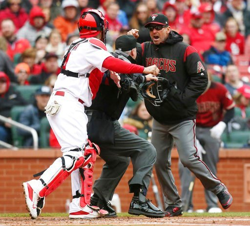 (Chris Lee/St. Louis Post-Dispatch via AP). Arizona Diamondbacks manager Torey Lovullo gestures at St. Louis Cardinals catcher Yadier Molina as he argues balls and strikes with home plate umpire Tim Timmons in the second inning of a baseball game on Su...