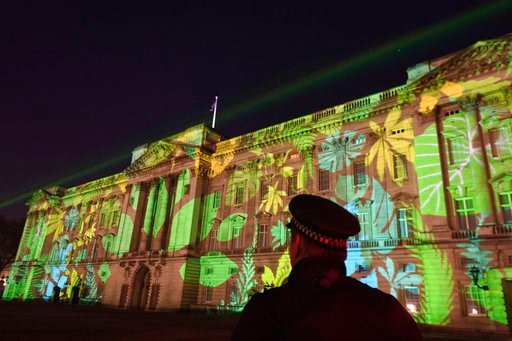 (Victoria Jones/PA via AP). A Rainforest design is projected onto Buckingham Palace in London on Sunday, April 15, 2018, as part of the Queen's Commonwealth Canopy project (QCC), a global conservation initiative in the Queen's name which seeks to prese...