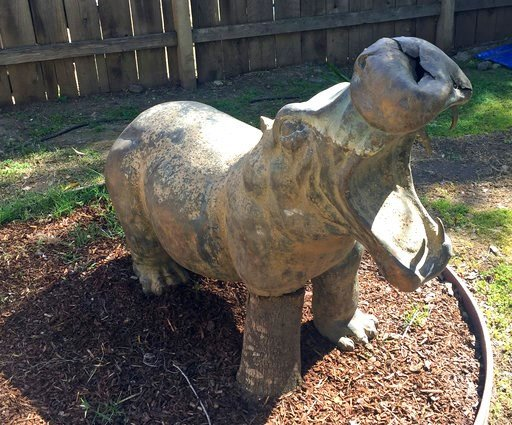 (Debra Benes via AP). This undated photo provided by Debra Benes shows a hippo statue in Monecito, Calif., that was discovered in the debris from the recent catastrophic California mudslides and returned to its owner through a Facebook mudslide lost an...