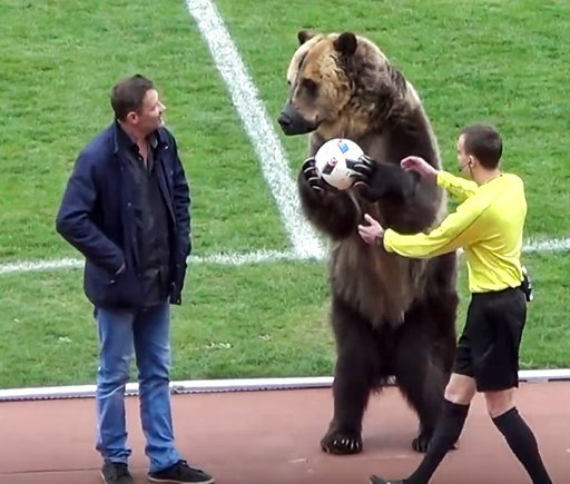 (FC Angusht Nazran youtube channel via AP). In this image taken from video provided by FC Angusht Nazran a bear performs before a Russian Second League soccer match between Angusht Nazran and Mashuk-KMV in Pyatigorsk, Russia on Sunday, April 15, 2018. ...