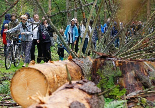 (AP Photo/Czarek Sokolowski, File). In a Sunday, Aug. 13, 2017 file photo, people take part in a protest against large-scale government logging in the Bialowieza Forest, Poland. Poland's environment authorities say that a decision has been taken to off...