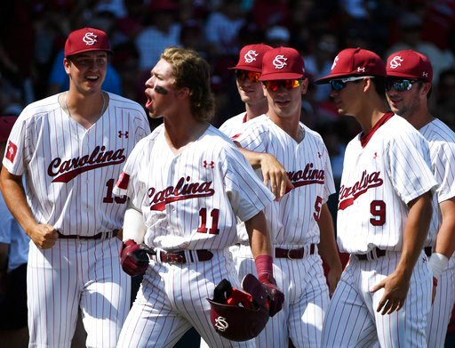 (AP Photo/Michael Woods). South Carolina's LT Tolbert (11) celebrates with teammates after hitting a grand slam home run against Arkansas in the fifth inning of an NCAA college baseball tournament super regional baseball game in Fayetteville, Ark., Sun...