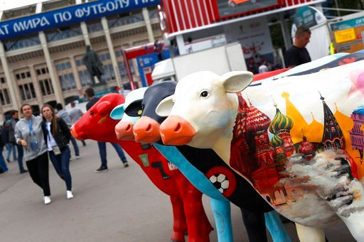 (AP Photo/Matthias Schrader). Colorfully painted advertising cows stand outside the stadium after the official training session of the Russian team one the eve of the group A match between Russia and Saudi Arabia at the 2018 soccer World Cup at Luzhnik...