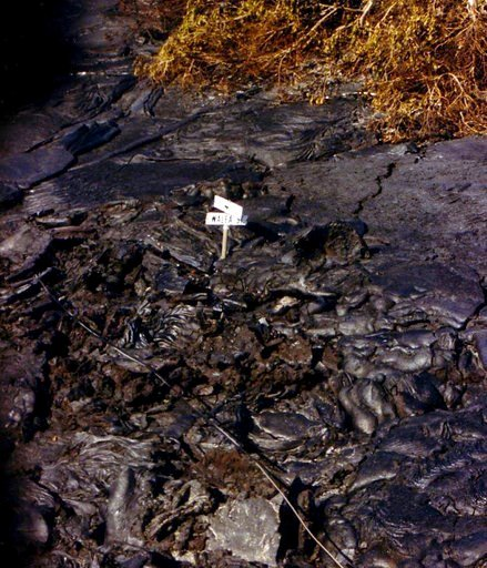 (Julie Beardsley via AP). This 1990 photo provided by Julie Beardsley shows a road sign nearly covered in lava from an eruption of Kilauea Volcano that destroyed her home and the entire town of Kalapana, Hawaii. Beardsley remembers lava slowly taking o...
