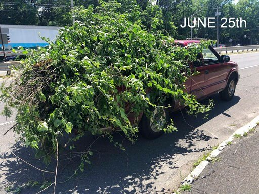 (Chicopee Police Department via AP). This June 25, 2018 photo released by the Chicopee Police Department shows an overloaded truck pulled over for uncovered cargo in Chicopee, Mass. The same unnamed driver was pulled over in by the Massachusetts State ...