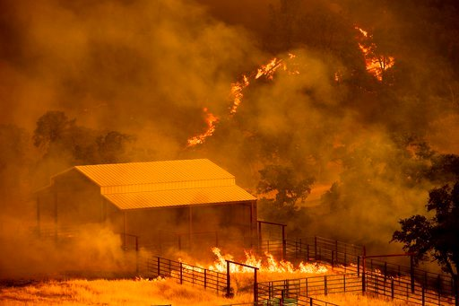 (AP Photo/Noah Berger). Flames rise around an outbuilding as the County fire burns in Guinda, Calif., Sunday July 1, 2018. Evacuations were ordered as dry, hot winds fueled a wildfire burning out of control Sunday in rural Northern California, sending ...