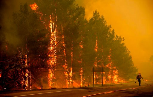(AP Photo/Noah Berger). A firefighter scrambles to stop a wildfire as wind drives embers across Highway 20 near Clearlake Oaks, Calif., on Sunday, July 1, 2018.