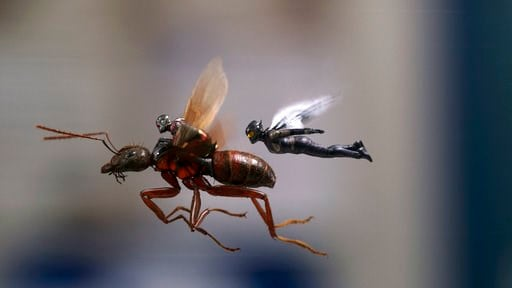 "(Disney/Marvel Studios via AP). This image released by Marvel Studios shows a scene from ""Ant-Man and the Wasp."""