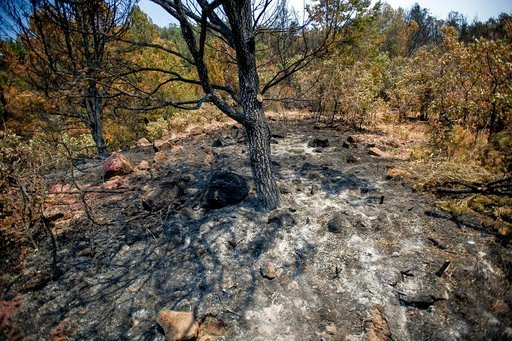 (Anna Stonehouse/The Aspen Times via AP). An area scorched by wildfire is seen above the Wilds neighborhood in Basalt, Colo., Sunday, July 8, 2018.