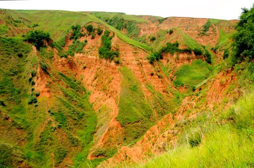(Zhaoyu Zhu via AP). This Friday, Jun. 11, 2010 photo provided by Zhaoyu Zhu shows the landscape near an archaeological site in the Loess Plateau in China, where researchers found 2.1-million-year-old stone tools. This find released on Wednesday, July ...