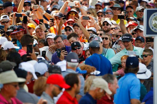 (AP Photo/Charlie Riedel). Fan cheer for Tiger Woods as he walks to the 15th tee during a practice round for the PGA Championship golf tournament at Bellerive Country Club, Wednesday, Aug. 8, 2018, in St. Louis.