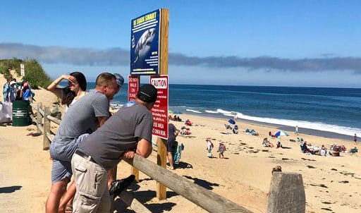 (AP Photo/Susan Haigh). People look out at the shore after a reported shark attack at Newcomb Hollow Beach in Wellfleet, Mass, on Saturday, Sept. 15, 2018. A man boogie boarding off the Cape Cod beach was attacked by a shark on Saturday and died later ...